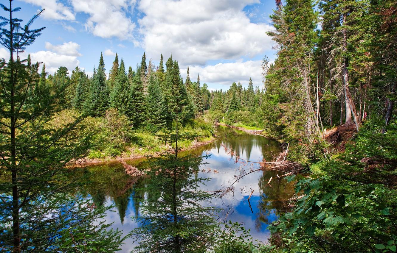 Photo wallpaper clouds, trees, nature, Park, river, Canada, Algonquin Provincial Park