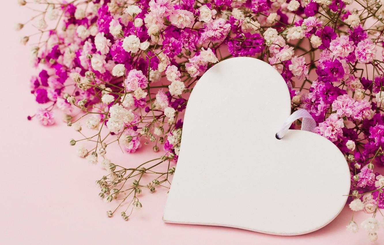 8100 Koleksi Romantic Love Flowers Wallpaper Download Gratis Terbaru