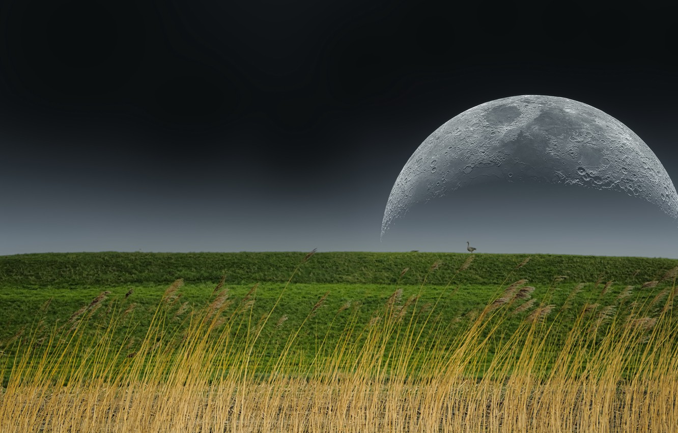 Photo wallpaper nature, earth, the moon