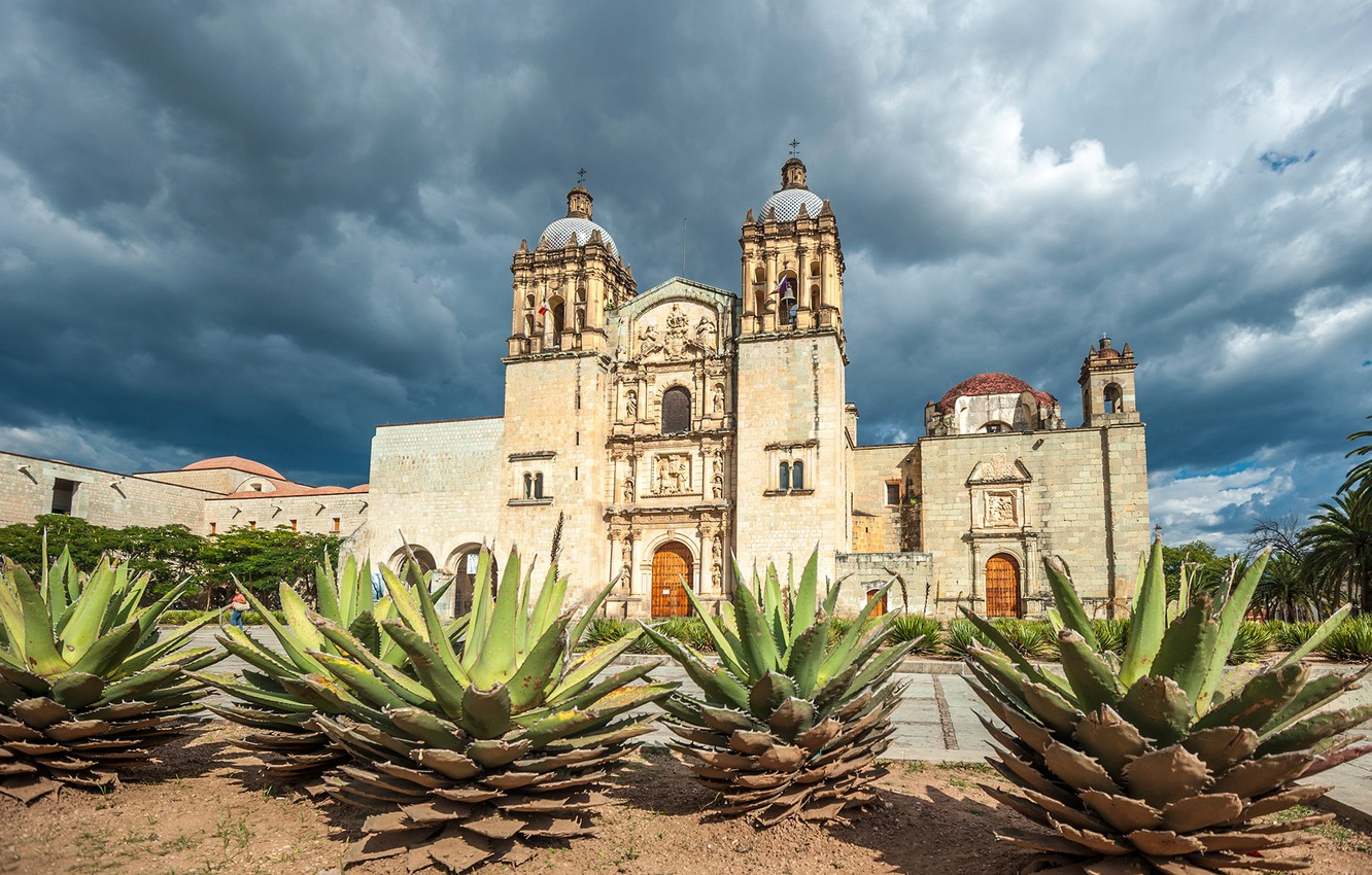 Photo wallpaper the sky, the sun, clouds, trees, clouds, palm trees, Mexico, Church, temple, cacti, Santo Domingo, …