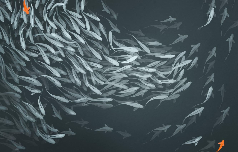 Photo wallpaper fish, wall, mood, figure, art, art, panels, Alexander Khitrov, GaudiBuendia