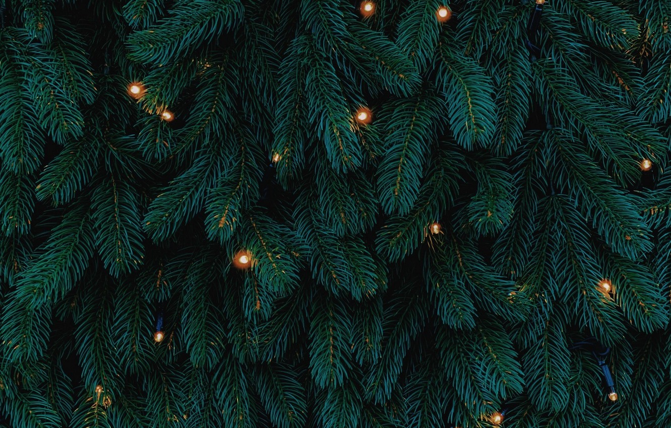 Photo wallpaper lights, Christmas, New year, tree, garland, holidays