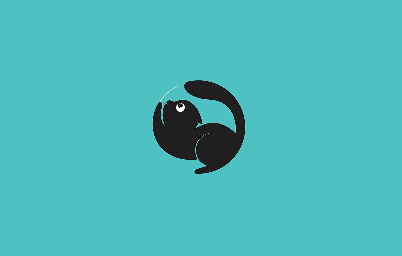 Photo wallpaper cat, background, Wallpaper, minimalism, vector, art, funny