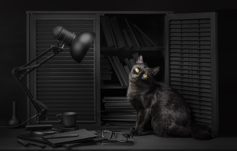 Photo wallpaper cat, eyes, cat, look, light, background, black, lamp, glasses, light, library, black, eyes, cat, background, …