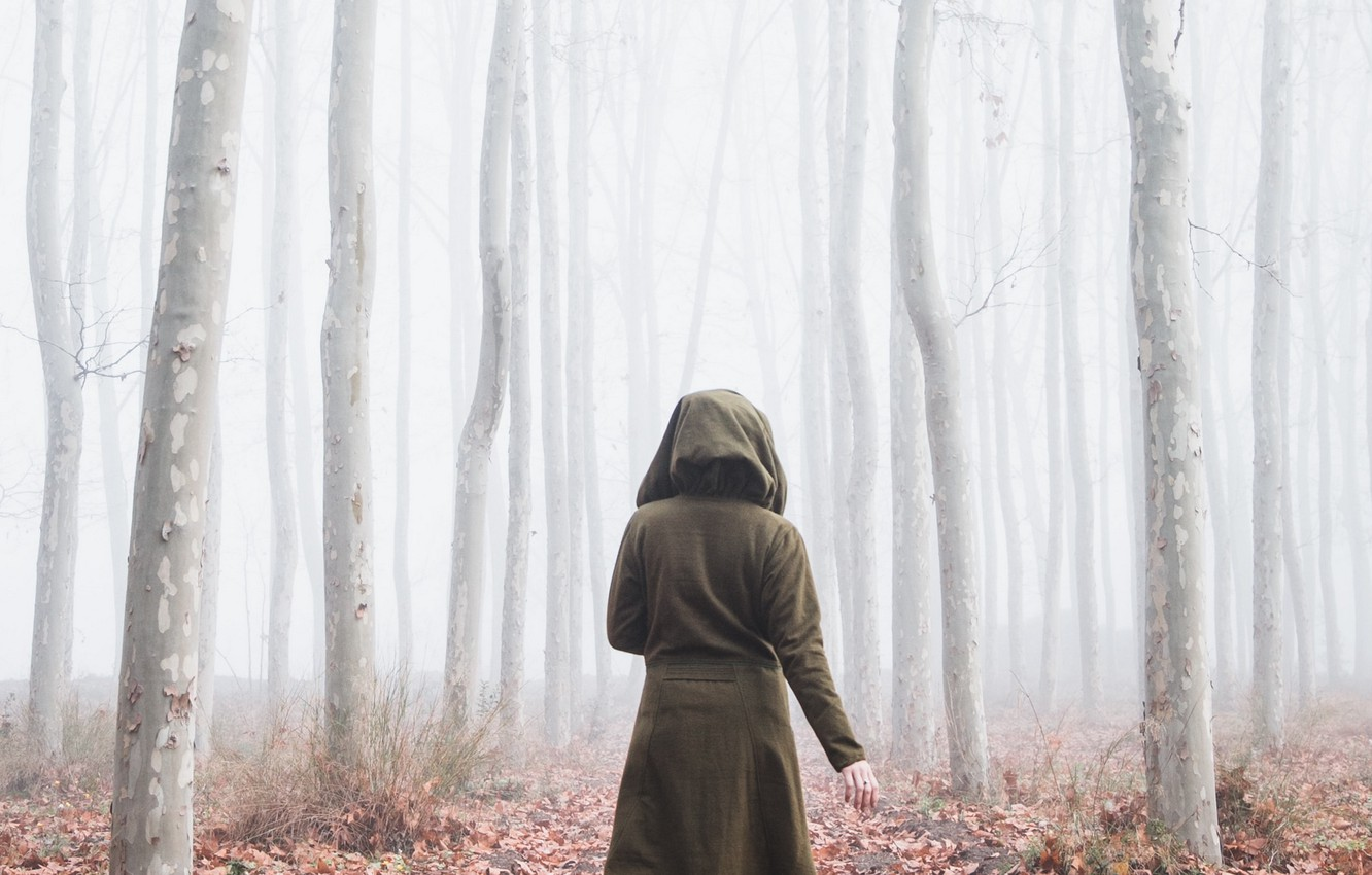 Photo wallpaper autumn, forest, fog, people, silhouette