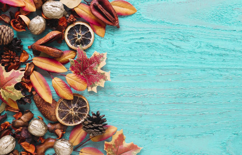 Photo wallpaper autumn, leaves, background, tree, colorful, nuts, bumps, wood, background, autumn, leaves, autumn, maple