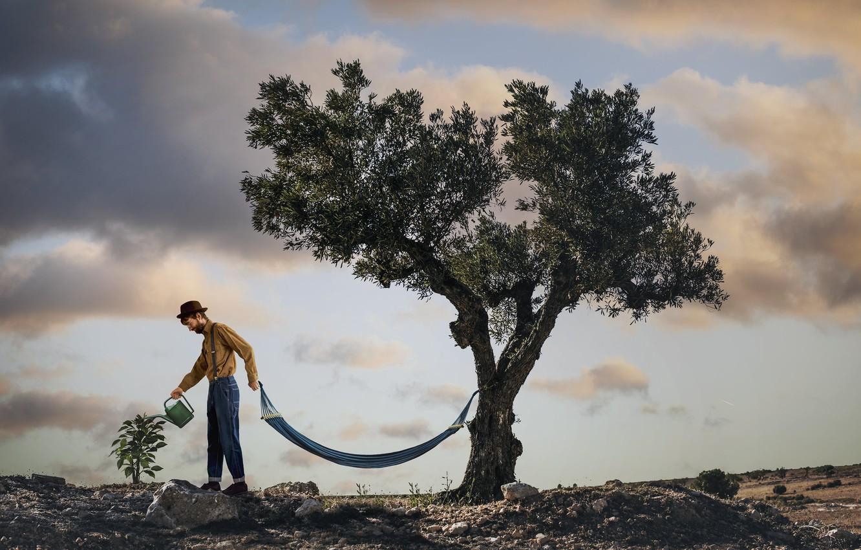 Photo wallpaper tree, people, hammock