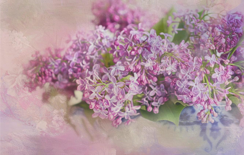 Photo wallpaper flowers, lilac, inflorescence, photoart