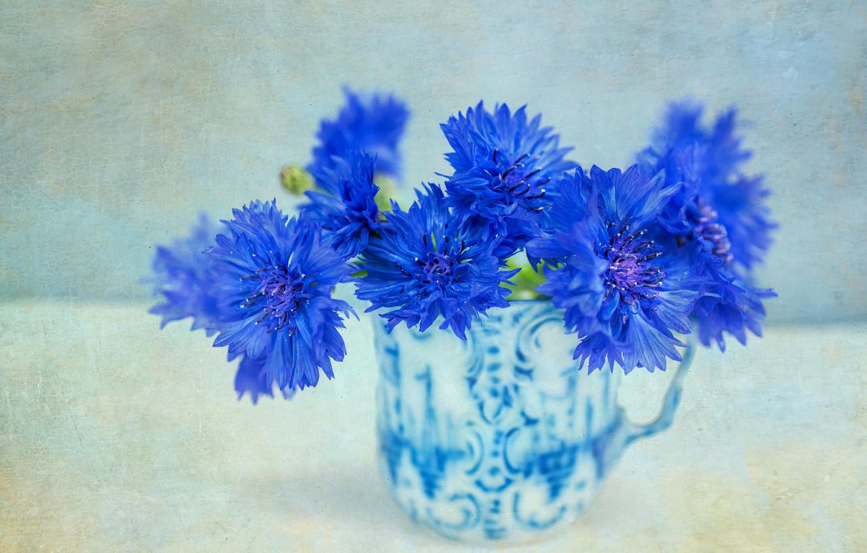 Photo wallpaper background, mug, cornflowers