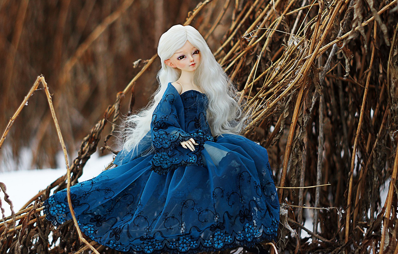 Wallpaper Winter Doll Dress Blonde Images For Desktop Section