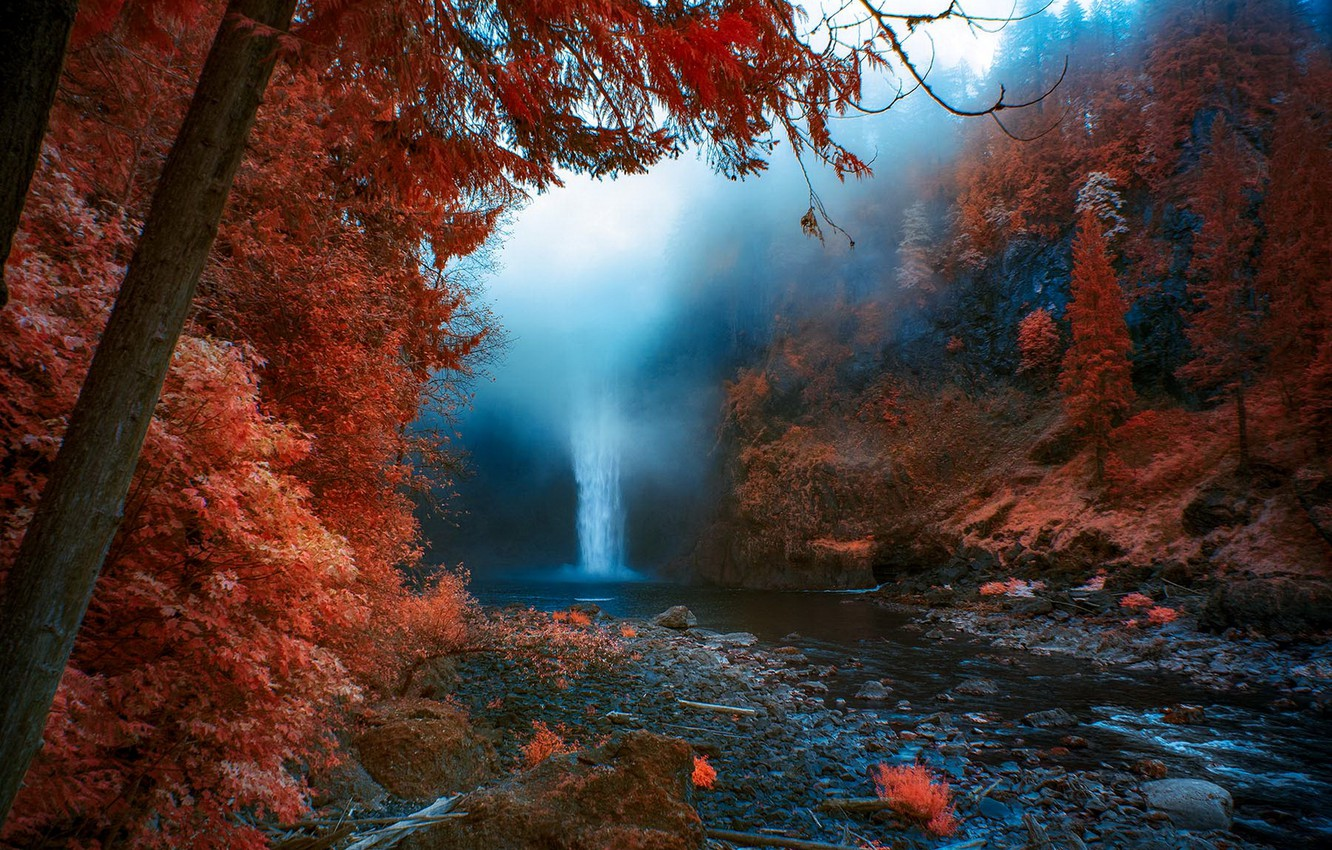 Photo wallpaper autumn, nature, fog, waterfall, United States, Washington, Snoqualmie Falls