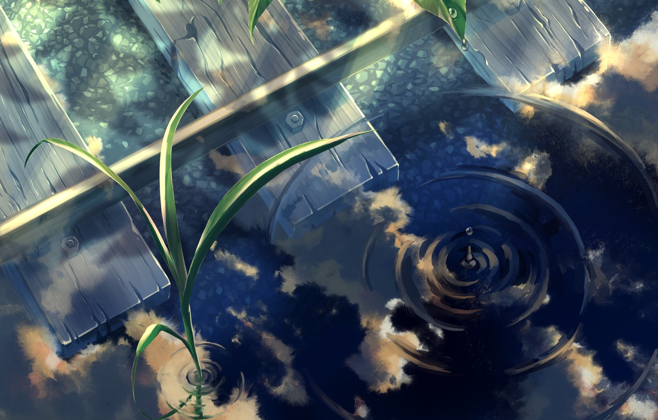 Photo wallpaper water, sprouts, rails
