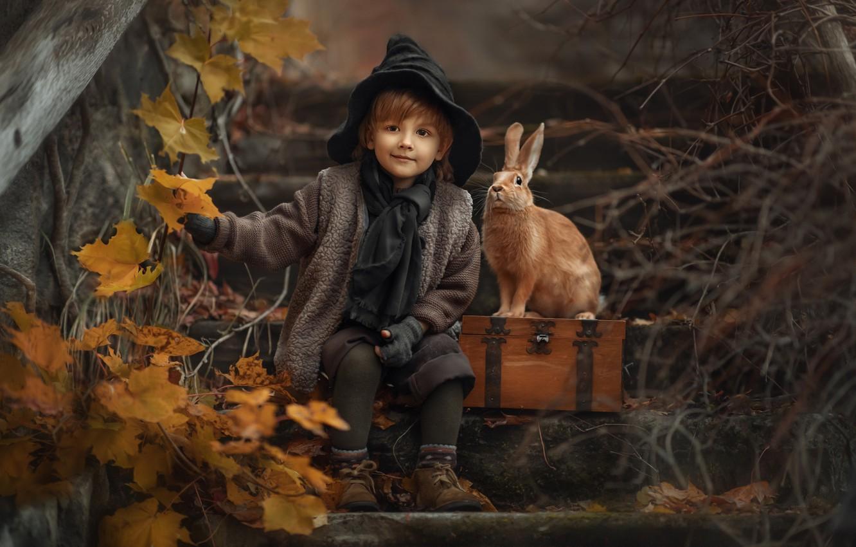 Photo wallpaper autumn, leaves, branches, nature, animal, boy, rabbit, ladder, box, child, Jansone Dace