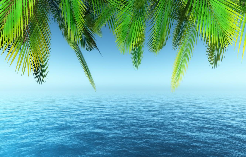 Photo wallpaper sea, beach, summer, the sky, palm trees, summer, beach, sea, paradise, palms, tropical