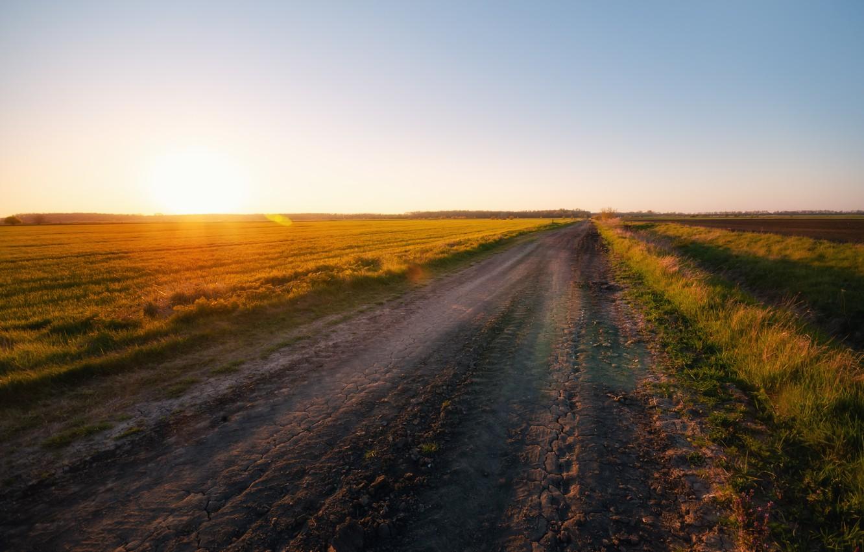 Photo wallpaper road, field, morning