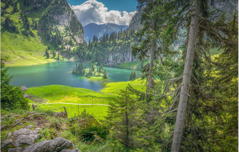 Photo wallpaper lake, island, Switzerland, Hinterstocker