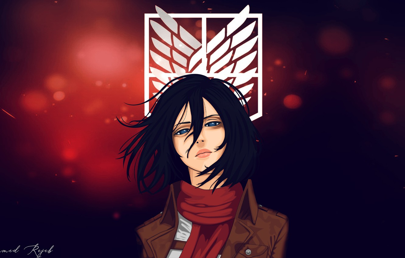 Wallpaper Look Girl Mikasa Ackerman Attack Of The Titans