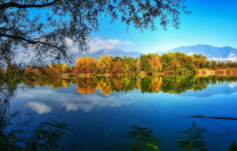 Photo wallpaper autumn, trees, branches, lake, reflection