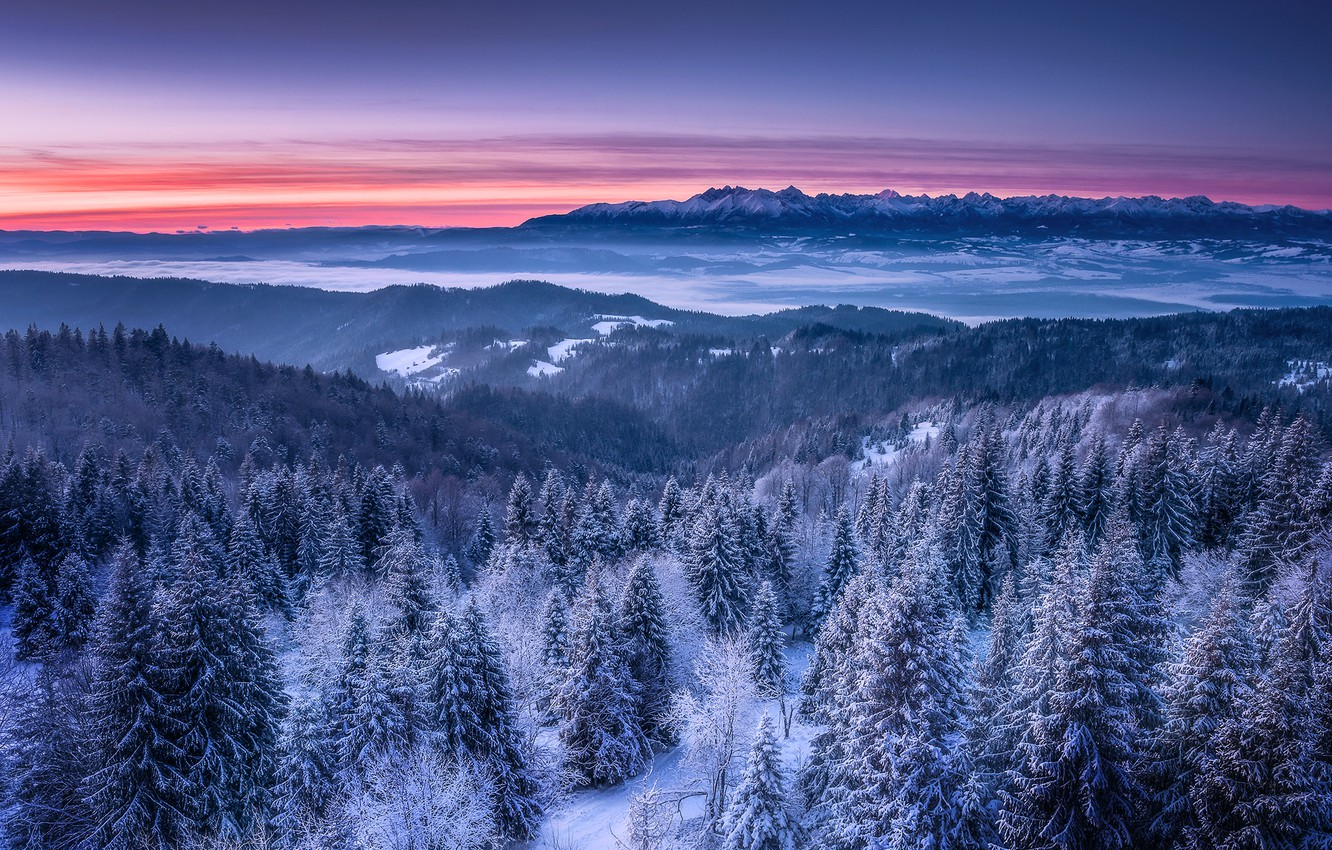 Photo wallpaper winter, snow, landscape, mountains, nature, morning, forest, dawn