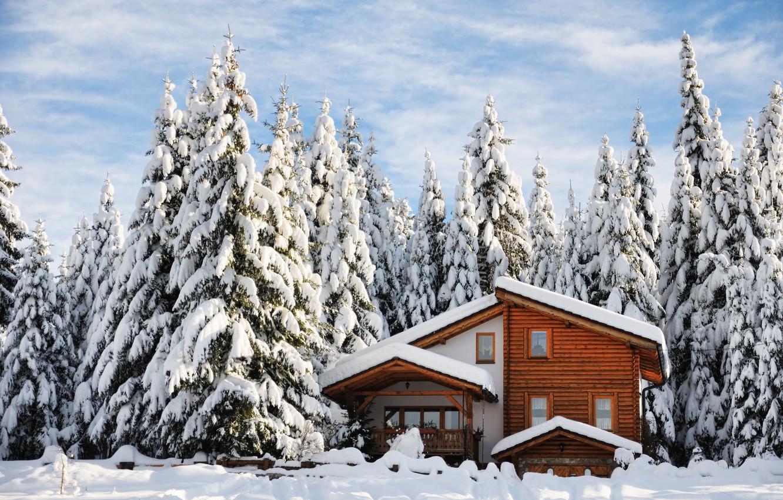Photo wallpaper winter, snow, trees, landscape, nature, winter, tree, house, house, landscape, nature, beautiful, winter, snow, cottage, …