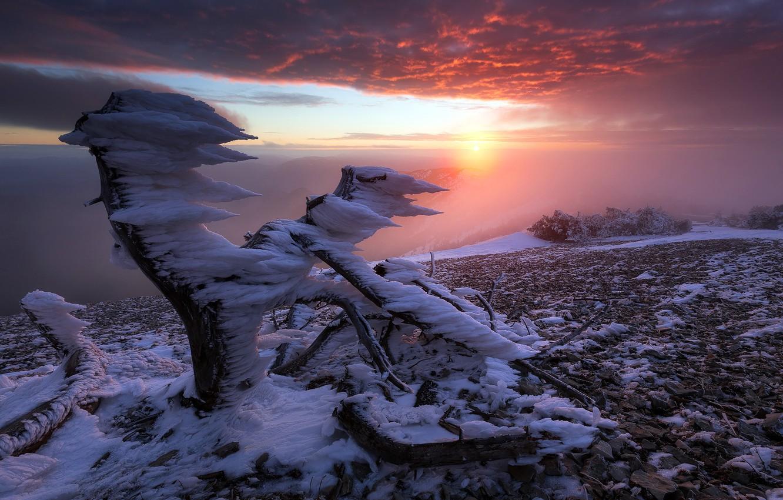 Wallpaper France Sunrise North Face Of Mt Ventoux Rest In