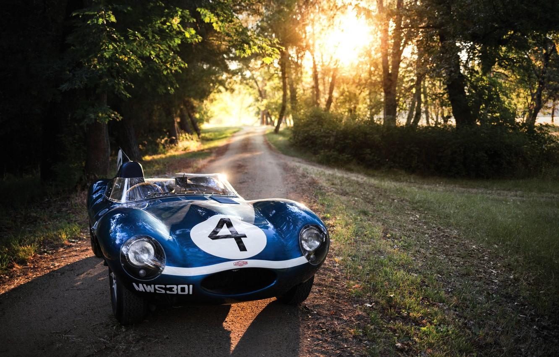 Photo wallpaper Forest, Car, Jaguar D-Type