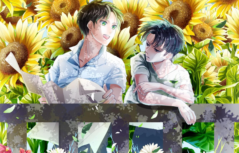 Photo wallpaper sunflowers, Attack On Titan, Shingeki No Kyojin, Eren Yeager, Attack of the titans, corporal Levi, …