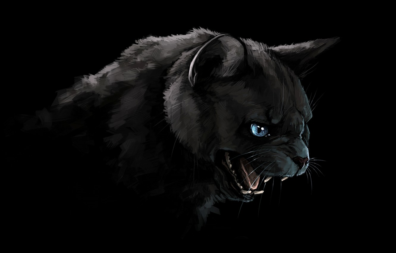 Photo wallpaper cat, cat, look, face, figure, portrait, Panther, art, mouth, fangs, grin, black, black background, blue …