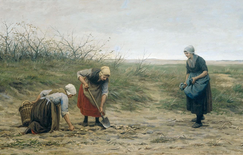 Photo wallpaper oil, picture, canvas, 1874, Scheveningens Women Gather Potatoes, Philip Garden, Philip Sadee