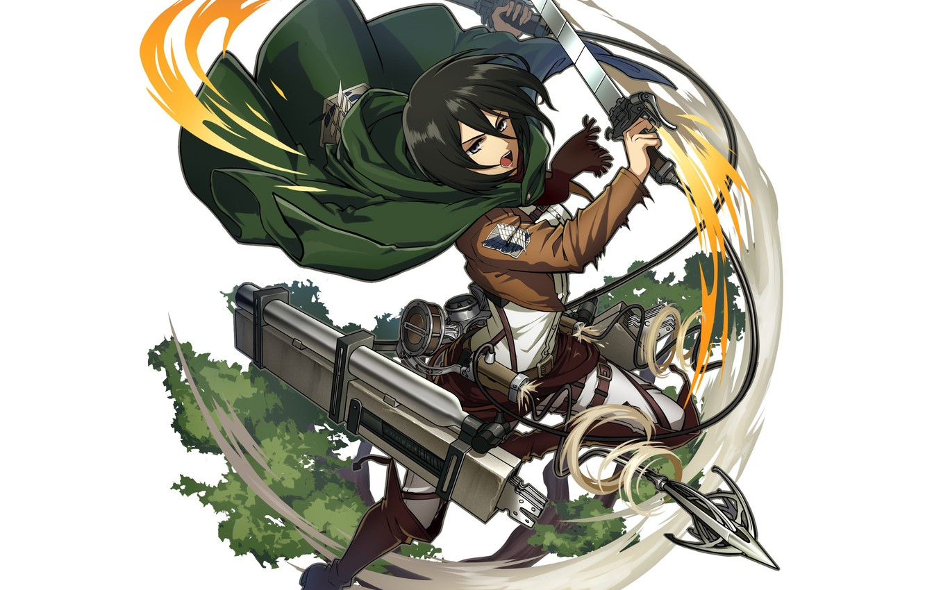 Wallpaper Weapons Shingeki No Kyojin Mikasa Ackerman Attack Of