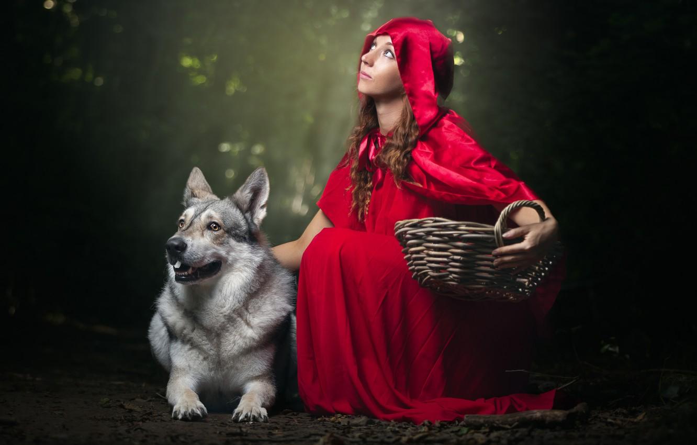 Photo wallpaper girl, dog, hood, cloak, basket, Little red riding Hood and Grey Wolf
