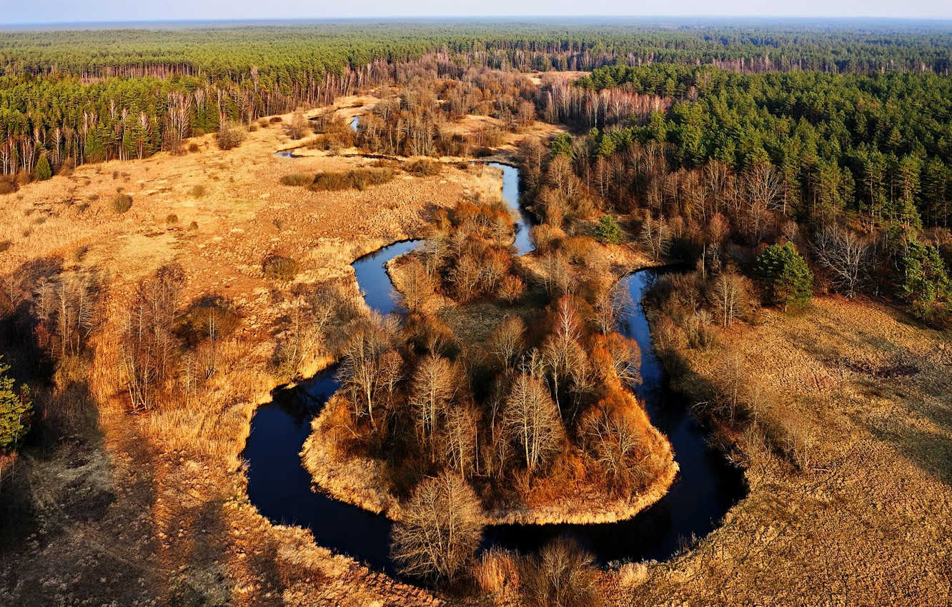 Photo wallpaper Lithuania, forest, the river