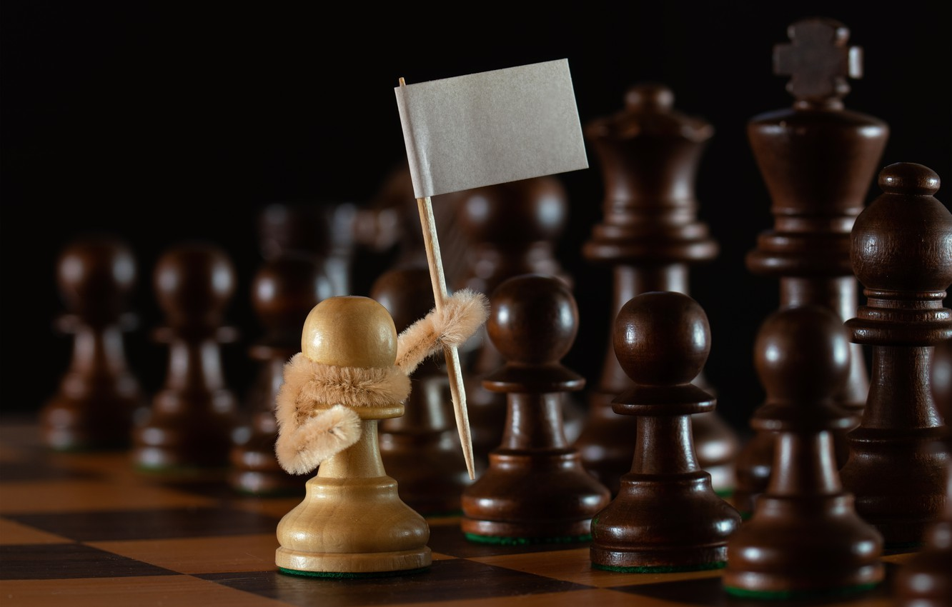 Photo wallpaper chess, pawns, white flag, surrender, the white pawn, Stems!
