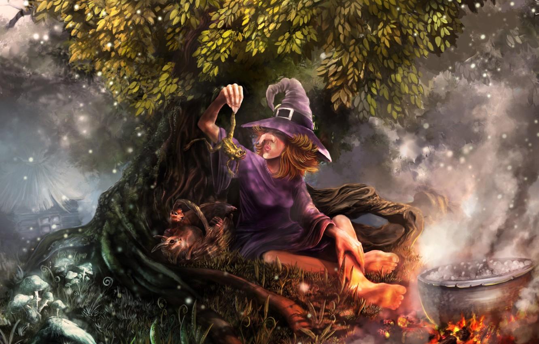 Photo wallpaper night, lights, fire, magic, ritual, lights, rabbits, haze, house, fire, house, witch, magic, toad, night, …
