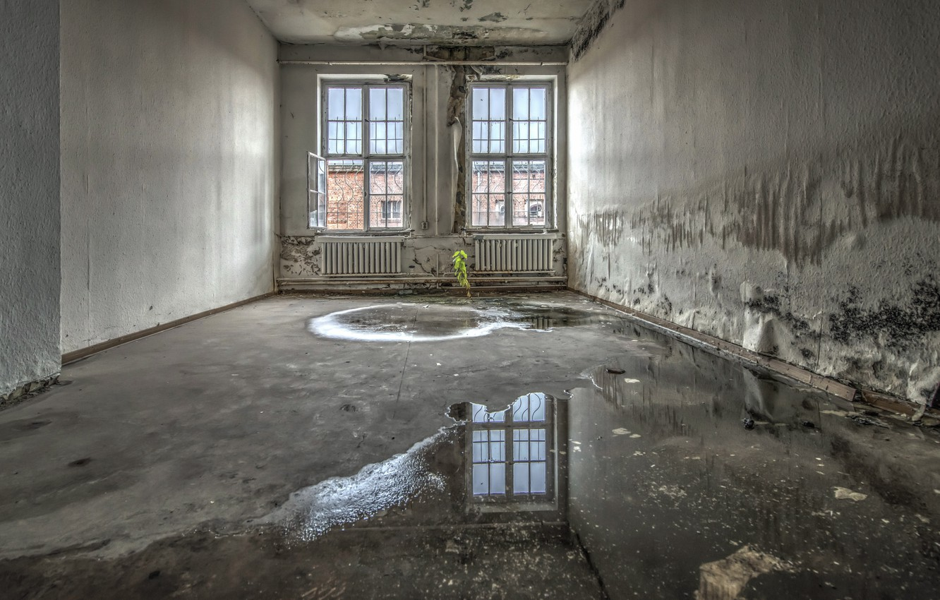Photo wallpaper room, puddle, window, naturalism
