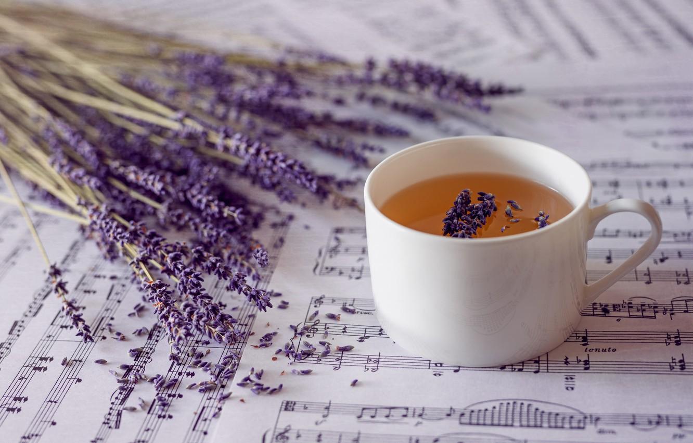 Photo wallpaper notes, tea, lavender