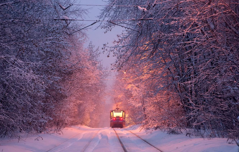 Photo wallpaper winter, tram, winter, tram, Alexey Kharitonov