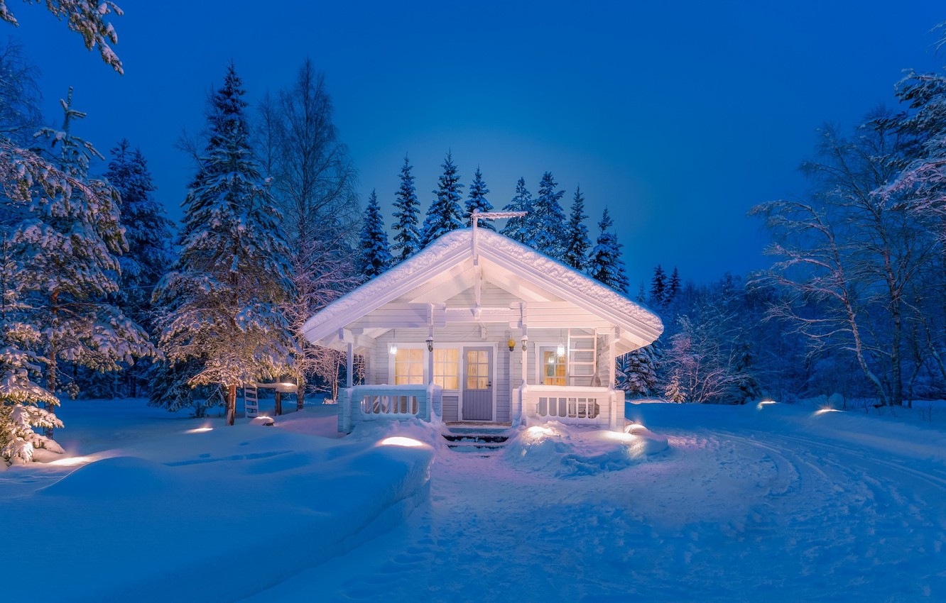 Photo wallpaper winter, forest, white, snow, night, lights, house, forest, night