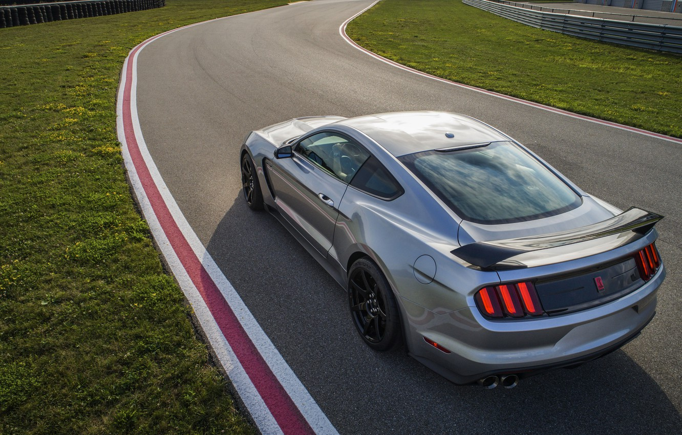 Photo wallpaper grey, lawn, Mustang, Ford, Shelby, GT350R, 2020