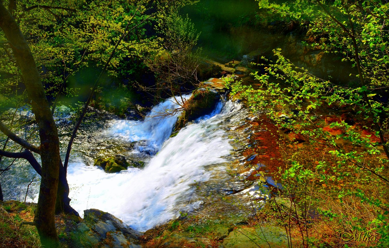 Photo wallpaper Waterfall, River, Forest, Waterfall, River, Forest