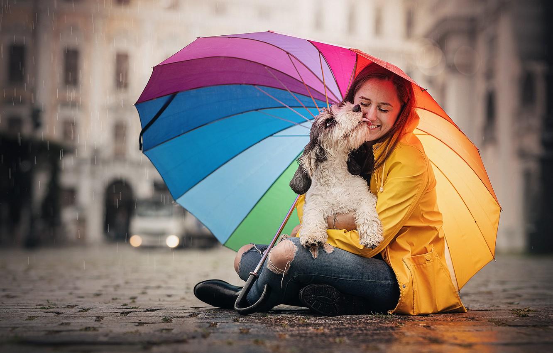 Photo wallpaper girl, dog, umbrella