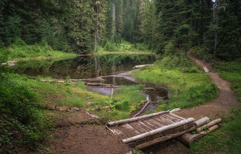 Photo wallpaper landscape, bridge, nature, lake, beauty