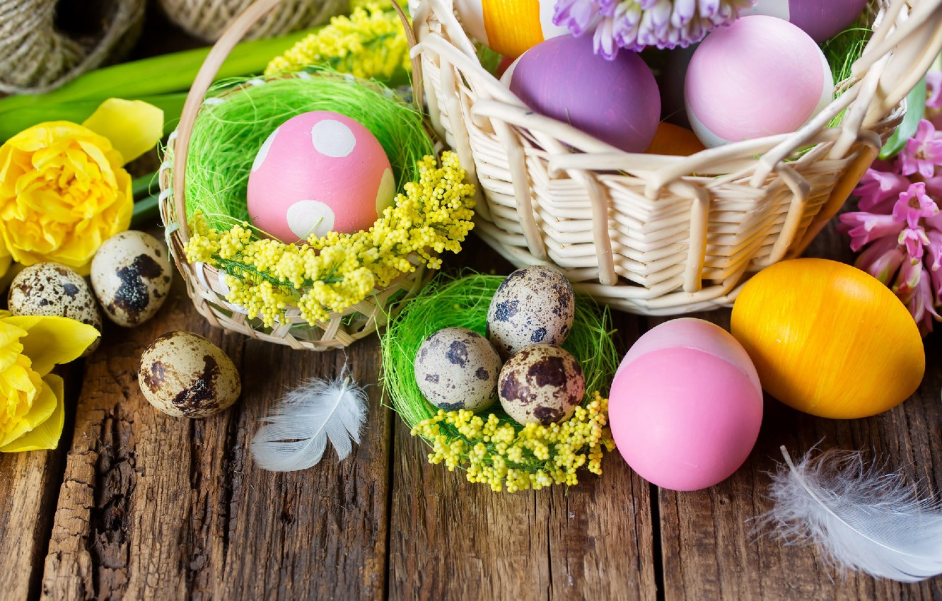 Photo wallpaper flowers, eggs, feathers, Easter, basket, eggs dyed