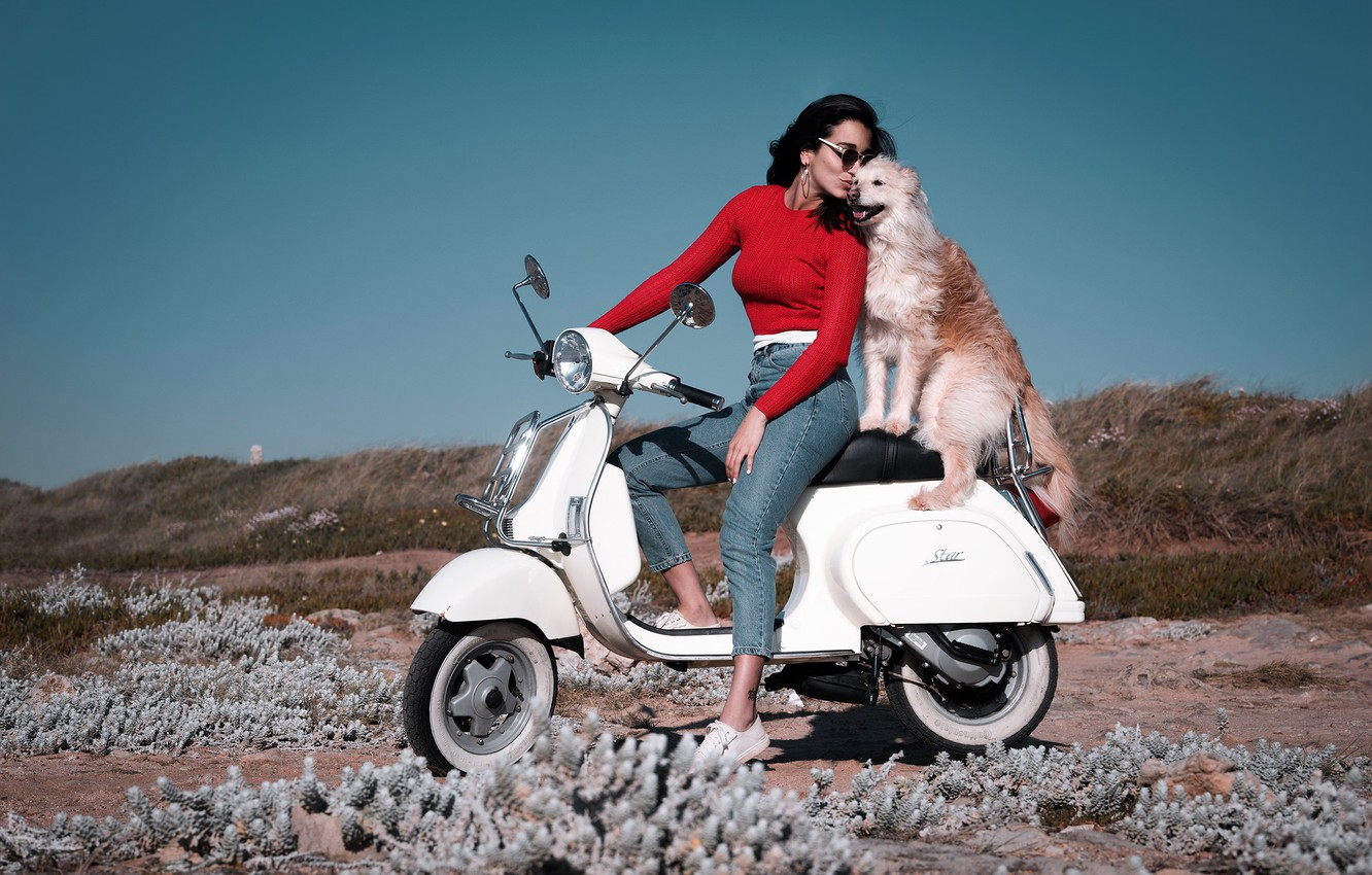Photo wallpaper girl, mood, coast, dog, jeans, friends, scooter, scooter