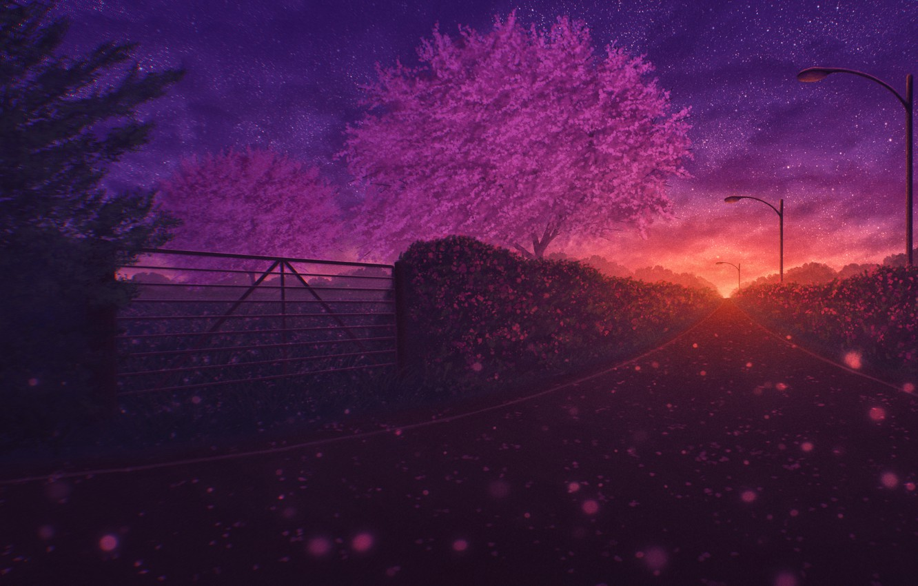 Photo wallpaper road, trees, sunset, nature, spring