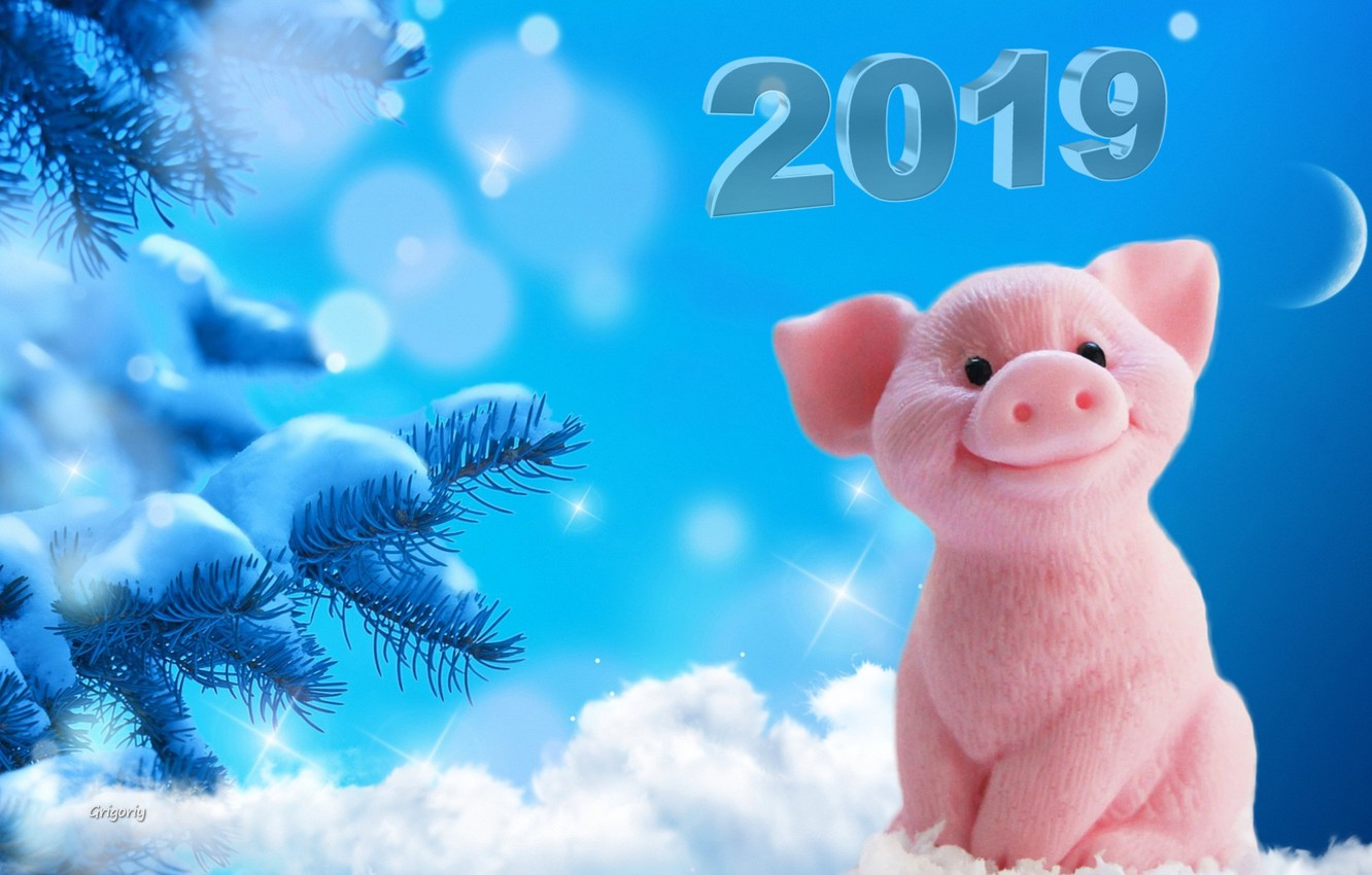 Photo wallpaper snow, snowflakes, the moon, new year, tree, pigs, 2019