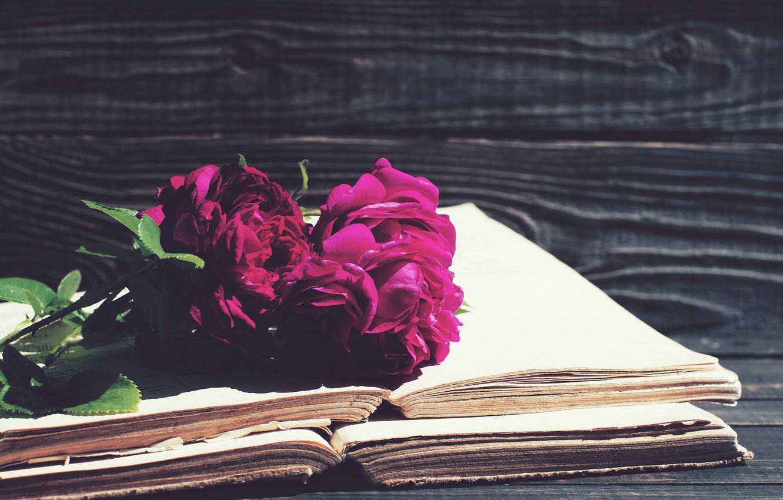 Photo wallpaper flowers, background, books, bokeh, peonies, Burgundy