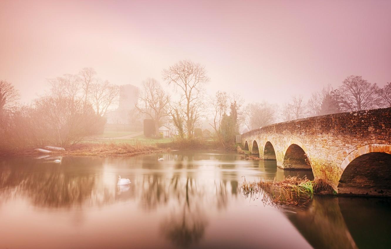 Photo wallpaper bridge, fog, river