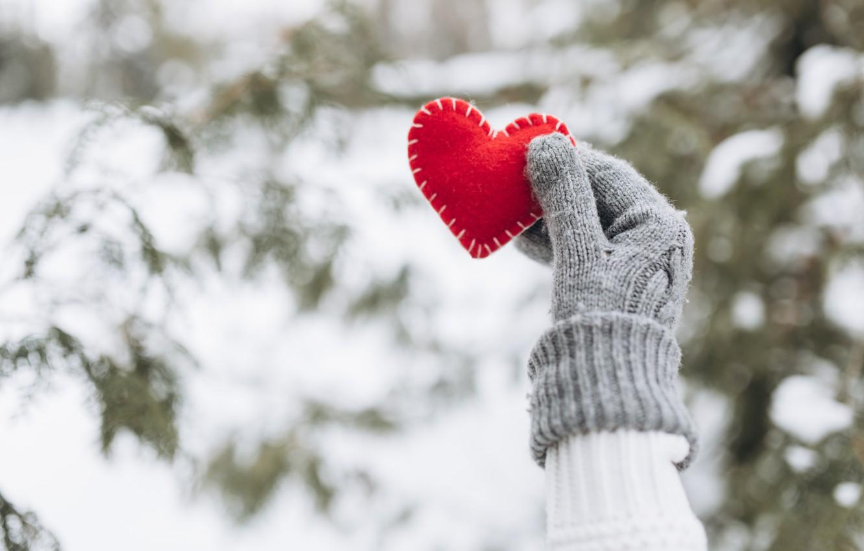 Photo wallpaper winter, snow, love, heart, tree, red, love, heart, winter, mittens, snow, romantic, hands, valentine, fir …