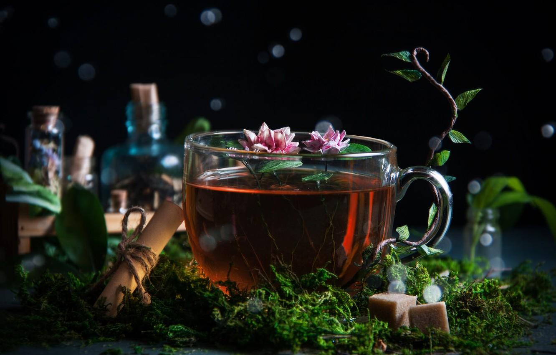 Photo wallpaper flowers, bubbles, tea, moss, Cup, sugar, bokeh, scroll